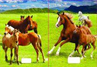 544 Zošit linajkový 8mm s 3D obalom, kone